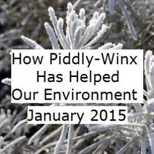 Piddly-Winx-Update-January-2015-Final