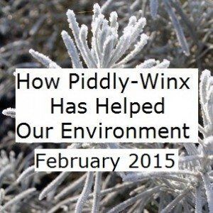 Piddly-Winx-Update-February-2015-Final