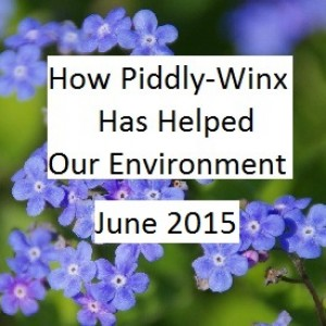 Piddly-Winx-Update-June-2015