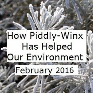 February Update Environmental Impact